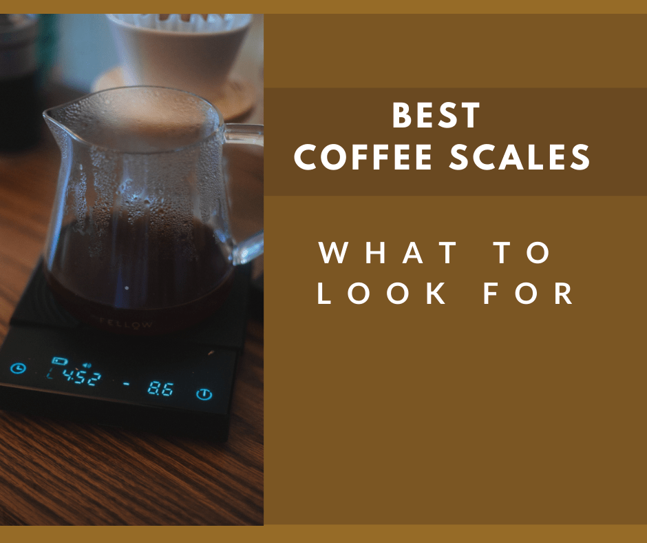 Best Coffee Scale and What To Look For