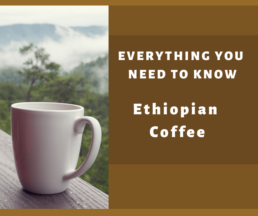 Ethiopian Coffee Everything You Need To Know